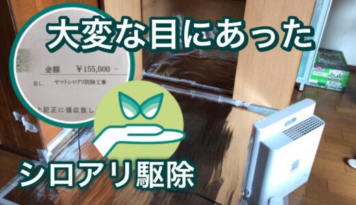 【体験談】シロアリ駆除で大変な目に!アレルギー体質の方は気を付けて